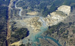Photo of landslide in Oso, Washington